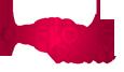 Logo oceľové rúry ŽP