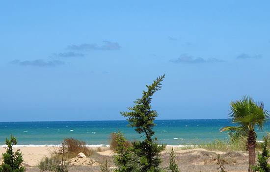 Pláž blízko Saidie