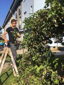 Úprava záhrady bola jednou z dobrovoľníckych aktivít