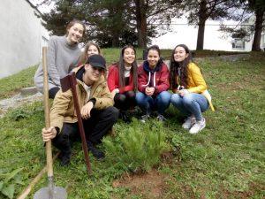 Výsadba stromčeka v areáli školy bola jednou z dvoch častí úlohy