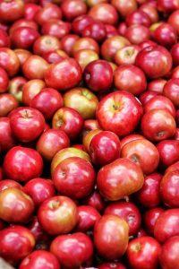 Ilustračné foto: pexels.com